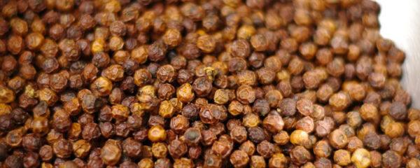 épices de Cambodge
